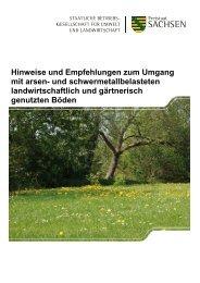 Hinweise und Empfehlungen zum Umgang mit arsen- und ...