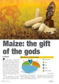 Maize: the gift of the gods - Page 3