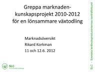 Marknadsinformation - Rikard Korkman, SLC - Slf