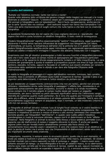 La scelta dell'obiettivo - Michele Vacchiano