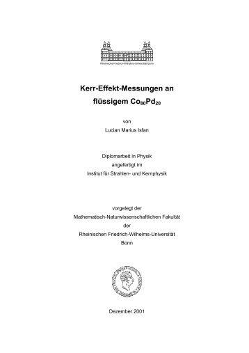 Kapitel 1 Einleitung - Gruppe - AG Maier - Universität Bonn