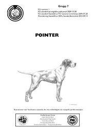 SKK-standard för Pointer - Svenska Kennelklubben