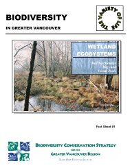 Wetland Ecosystems Marshes/Swamps Bogs and Vernal Pools