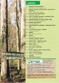 Ljekovita kopriva (Urtica dioica L.) - Hrvatske šume - Page 2