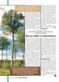 Ljekovita kopriva (Urtica dioica L.) - Hrvatske šume - Page 6