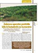Ljekovita kopriva (Urtica dioica L.) - Hrvatske šume - Page 7