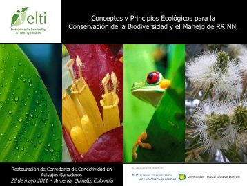 Conceptos y Principios Ecológicos para la Conservación de la ...