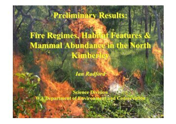 Fire & mammals in the north Kimberley