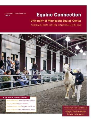 Equine Connection - University of Minnesota College of Veterinary ...