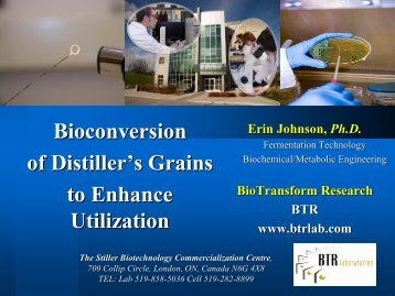 Bioconversion of Distillers Grains to Enhance Utilization