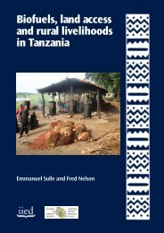 Biofuels, land access and rural livelihoods in Tanzania - Sokoine ...