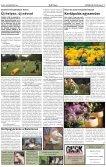 Augusztus 24. - Gödöllői Szolgálat - Page 7
