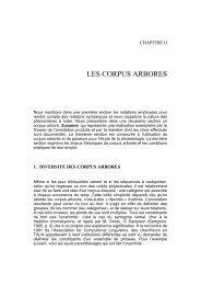 LES CORPUS ARBORES - Lexicometrica