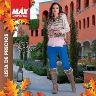 Esquema de ganancias - Max Zapatos