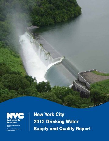 New York City 2012 Drinking Water Supply and Quality ... - NYC.gov