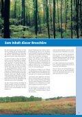 im Landkreis Wolfenbüttel - Seite 3