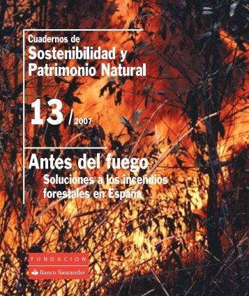 Antes del fuego. Soluciones a los incendios forestales en España