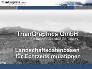 3) Generierung - Textur - Triangraphics GmbH