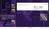 Express Suite Brochure - LizardTech
