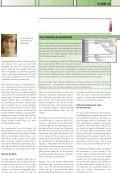 Ihr Partner für elektronische und gedruckte - Bruhin AG - Seite 5