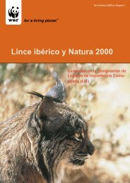 Lince y red Natura 2000 - Life Lince