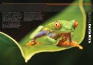 Costa Rica - Journey Latin America