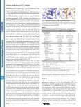Entrapment of Carbon Dioxide in the Active Site of Carbonic ... - Page 3