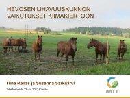 Horse Grass, Tiina Reilas - Hippos
