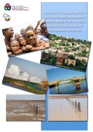 Download - African Centre for Disaster Studies - NWU