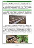 El acolchado plástico - AgroCabildo - Page 2