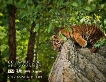 CZA_2012_ANNUAL_REPORT Mar 2014