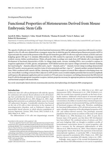 Functional Properties of Motoneurons Derived from Mouse ...