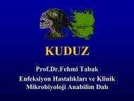 Prof.Dr.Fehmi Tabak Enfeksiyon Hastalıkları ve Klinik Mikrobiyoloji ...