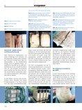 Tiefgefroren, getrocknet und gerettet - Mibag - Seite 3