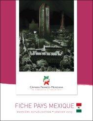 FICHE PAYS MEXIQUE - Procamex