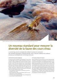 Un nouveau standard pour mesurer la diversité de la faune des ...