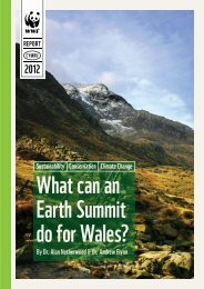 What can an Earth Summit do for Wales? - WWF UK