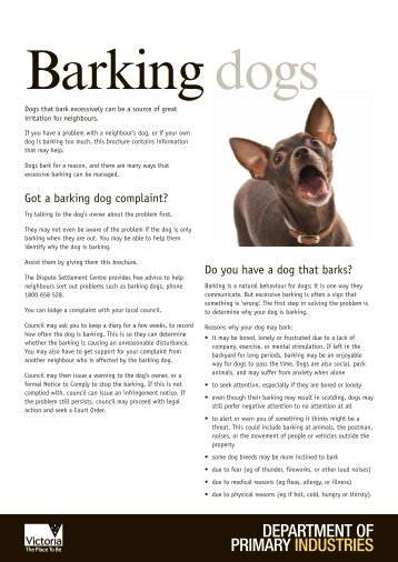 how to write a letter to council about barking dog