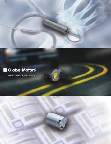 experts in motion control - Globe Motors