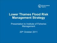 Lower Thames Flood Risk Management Strategy - Institute of ...