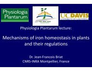 Physiologia Plantarum Lecture - IPNC Home Page