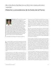 Historia y procedencia de la Carta de la Tierra - Earth Charter Initiative