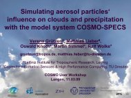 Simulating Aerosol Particles Influence on Clouds and ... - Cosmo
