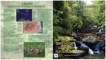 LUQ Brochure - LTER Intranet
