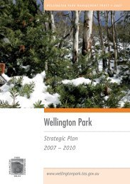 Corporate Strategic Plan - Wellington Park