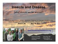 Insects and Disease - Kootenay Resilience
