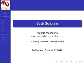 Bash Scripting - Antonio Mucherino Home Page