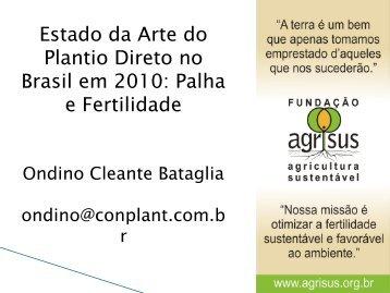 Estado da Arte do Plantio Direto no Brasil em 2010 - Instituto ...