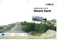 Case Studies from the Dinaric Karst of Slovenia