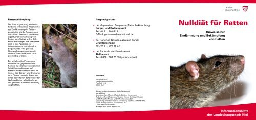 Nulldiät für Ratten - Landeshauptstadt Kiel